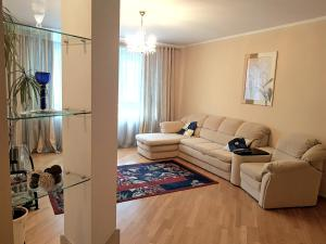 Гостиная зона в Ratslinden Apartment