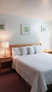 Łóżko lub łóżka w pokoju w obiekcie City Center Hotel Los Angeles