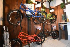 Biking at or in the surroundings of Kyoto Villa Chiyotsuru