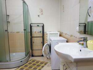 A bathroom at Kvartira na Shembelidi