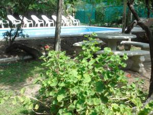 La pileta dentro o cerca de Apart-Cabañas De La Plaza