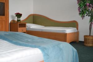 Postel nebo postele na pokoji v ubytování Hotel Jaškovská Krčma