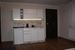 Kuchnia lub aneks kuchenny w obiekcie Apartamenty Ostryga Łeba