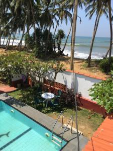 Вид на бассейн в Petters Beach Inn или окрестностях