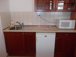 A kitchen or kitchenette at Hotel Ovit