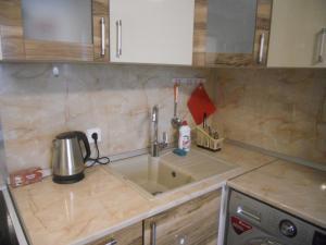 Кухня или мини-кухня в Studio on Pulkosvkoe 14G