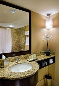A bathroom at Crowne Plaza Chicago O'Hare Hotel & Conference Center, an IHG Hotel