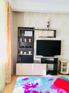Телевизор и/или развлекательный центр в Apartment near metro Electrosila