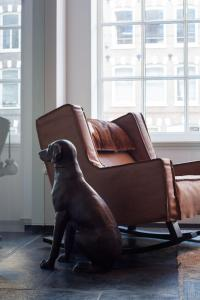 Pet or pets staying with guests at Sir Albert Hotel