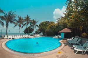 The swimming pool at or near Coral Bungalows