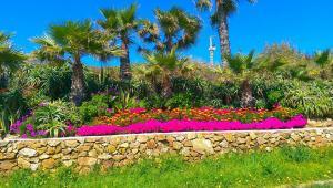 A garden outside La Ferma