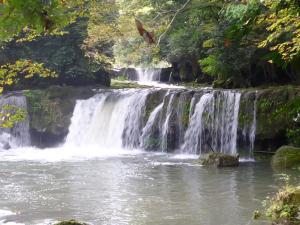 旅館の近くで見られる自然の景観