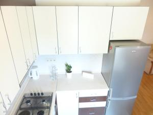 A kitchen or kitchenette at Avian Apartment