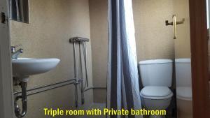 Un baño de Travel Inn