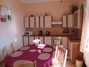 Кухня или мини-кухня в U Nás