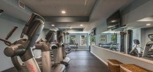 The fitness center and/or fitness facilities at Valhalla Resort Hotel