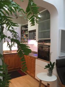 Kuchnia lub aneks kuchenny w obiekcie Geranio Blanco