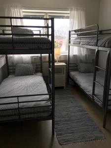 Våningssäng eller våningssängar i ett rum på Kolmårdens Vandrarhem