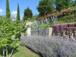 """Giardino di Ancient estate """"Il Trignano"""""""
