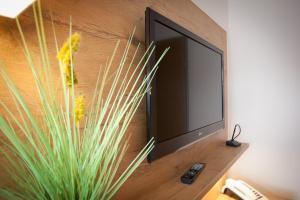 TV/Unterhaltungsangebot in der Unterkunft Ruser's Hotel