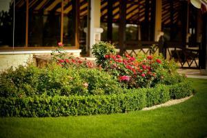 A garden outside Park Hotel Warshawskiy