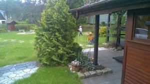 Ogród w obiekcie Domek Bory Tucholskie