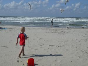 Een strand bij of vlak bij het vakantiehuis