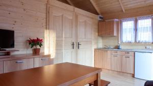 Kuchnia lub aneks kuchenny w obiekcie Domki Batumi