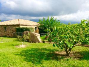 Jardin de l'établissement Clos Simoni