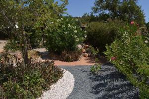 A garden outside Casa Catarina