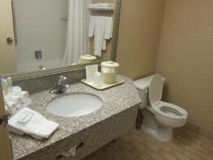A bathroom at Holiday Inn Express Toronto East, an IHG Hotel