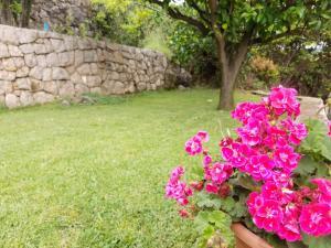 Vrt u objektu Marivo Guest House