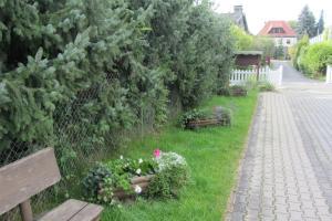 A garden outside Pension Egerer