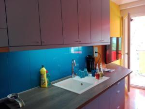 Kuhinja ili čajna kuhinja u objektu Šareni