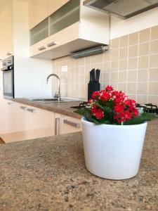 Kuchyň nebo kuchyňský kout v ubytování Apartman MiMi