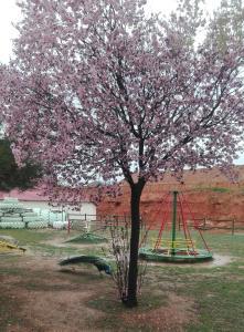 Children's play area at Arcojalon