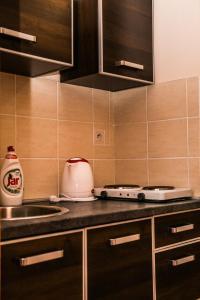 Kuchyňa alebo kuchynka v ubytovaní Penzion Fako