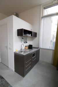 A kitchen or kitchenette at Loskade 45