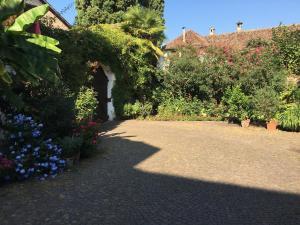 A garden outside Ansitz Wendelstein