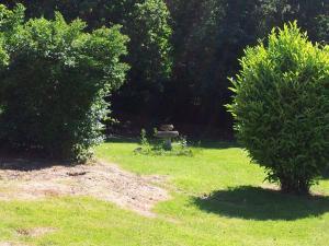A garden outside Ruxley Rooms