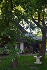 Ein Garten an der Unterkunft Gästehaus Bohg