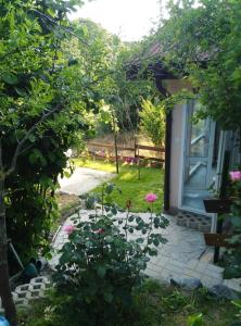 Градина пред Вила Синьо Лято