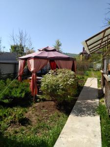 Сад в kemper-shire