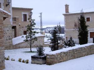 Pago de Trascasas during the winter