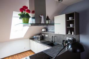 A kitchen or kitchenette at Apartmány u sv. Kryštofa