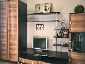 Телевизор и/или развлекательный центр в Lenskaya apartment