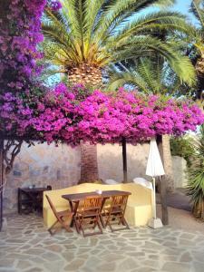 Un patio o zona al aire libre en Hotel Montemar