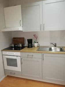 Majoituspaikan RBA RentHouse Apartment 1 keittiö tai keittotila