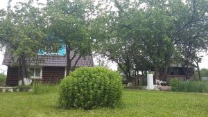 Сад в Гостевой дом на Михалях