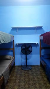 A bunk bed or bunk beds in a room at Go Slow Guesthouse